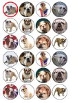 24 x British Bulldog edible rice wafer paper bun cup cake top toppers